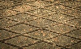 Metal oxidado com nervuras velho com líquene Imagem de Stock Royalty Free