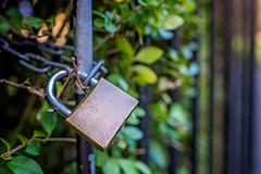 Metal padlock on the fence Stock Photography