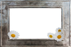 Metal picture frame with flowers Stock Images