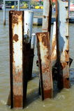 Metal posts left over from an old pier. Stock Photography