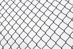 Metal protective grid 3. Fencing from an iron grid on a white background Stock Image