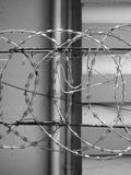 METAL RAZOR WIRE FENCING Stock Image