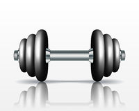 Metal realistic dumbbell Royalty Free Stock Photography