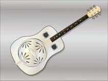 Metal Resonator Guitar Stock Photography