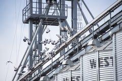Metal rolniczy góruje z gołębi latać obraz stock