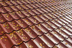 Metal roof background Stock Image