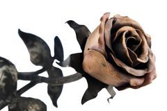 Metal rose royalty free stock photos