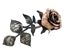 Metal rose. Metal forged rose isolated on white Stock Photography