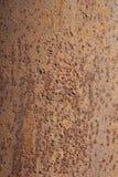 Metal rust background Stock Image