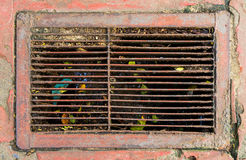Metal Rustic dirty street water drain full gabbage Royalty Free Stock Images