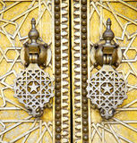 Metal rusty  brown    morocco in gold   facade home and safe pad Stock Photography