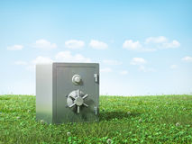 Metal safe on the grass. Stock Image