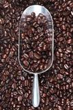 Metal Schaufel voll der Kaffeebohnen Lizenzfreies Stockfoto