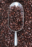 Metal scoop full of coffee beans Royalty Free Stock Photo