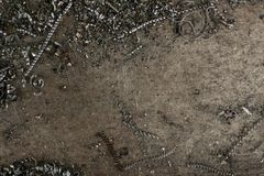 Metal scrap sawdust as an abstract background. Close up royalty free stock photography