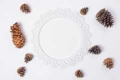 Metal Serving Tray with Pine Cones Flat Lay Top View. A Metal Serving Tray with Pine Cones Flat Lay Top View Stock Photos