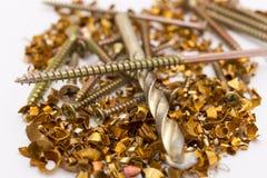 Metal shavings and screws Royalty Free Stock Image