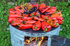 Metal sheet cooker full of roasted peppers Royalty Free Stock Photos
