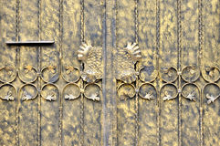Metal sheet door in painting. Metal sheet door in golden color painting, with decorative pattern, shown as feature and detail of architecture, color and texture Royalty Free Stock Photo