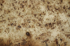 Metal sheet with traces of corrosion background Royalty Free Stock Photo