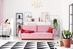 Metal shelves and abstract paintings behind powder pink couch in elegant white living room stock image
