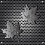 Metal shield maple leaf  background with rivets Stock Photos