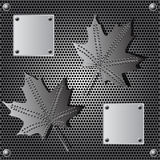 Metal shield maple leaf  background with rivets Stock Images