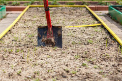 Metal shovel in the ground. Royalty Free Stock Image