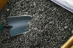 Metal shovel, pours a lot of black small screws for repair and fasteners in the box close-up. Fastener shop and sale of necessary for finishing and repair work stock image