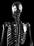 Metal skeleton Royalty Free Stock Photo