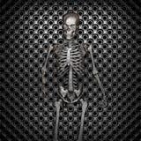 Metal skeleton Royalty Free Stock Images