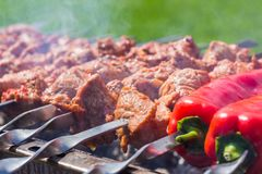 Metal skewers with marinated raw pork whole chilies on a barbec royalty free stock photos