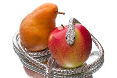 Metal snake for apples and pears. Silver metal snake for apples and pears isolated on white background stock photos