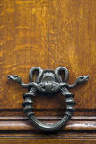 Metal snake door knocker. Exotic metal snake knocker on wooden door, Paris, France Royalty Free Stock Photos