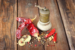 Metal spice grinder with red hot peppers and bay leaf Royalty Free Stock Photography