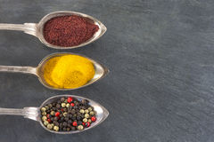 Metal spoons with various ground spices on slate background Stock Photography