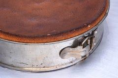 Metal springform with fresh cake Stock Image