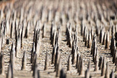 Metal stakes as background Stock Images
