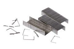 Metal Staples Macro Royalty Free Stock Photo