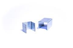 Metal staples Stock Photo