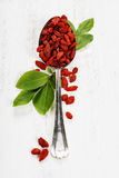 Metal tablespoon of dried goji berries Royalty Free Stock Photography