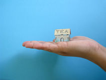 Metal Tea Container. A metal tea strainer shaped like a house in the palm of a hand Royalty Free Stock Photo