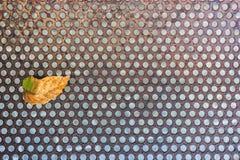 Metal tekstura z dziurami i starym liściem tła grille głośnikowy tekstury use kształtu geometrycznego abstrakcyjne Obraz Royalty Free