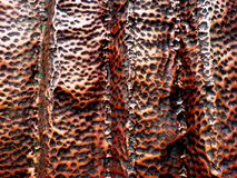 Metal textur för bakgrund Royaltyfria Foton