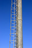 Metal tower with ladder. High metal tower with ladder isolated in blue sky Stock Photo