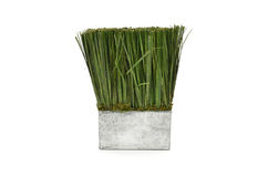 Metal vase with artificial grass Stock Image