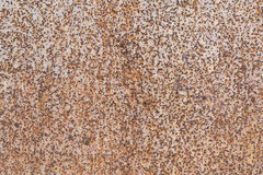 Metal wall sheet metal. The leaf rust is visible as small dots and speckles. The leaf was painted with beige paint stock images