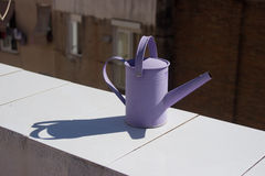 Metal watering can Stock Image