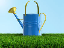 Metal Watering Can on grass (clipping path included) Royalty Free Stock Image