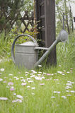 Metal watering can on lawn Stock Images